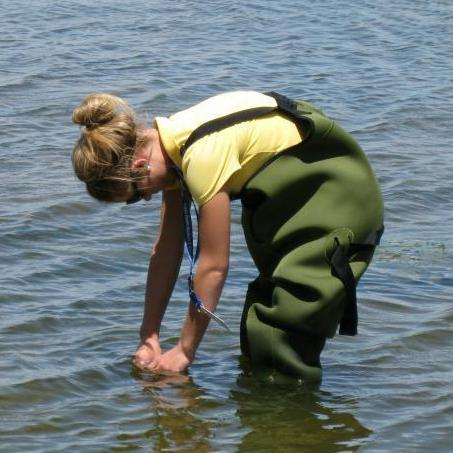 Public Health  staff monitoring water quality