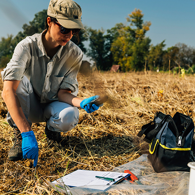 scientist taking a soil test
